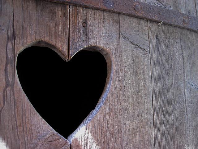 Herz Blasenschwäche Klotüre